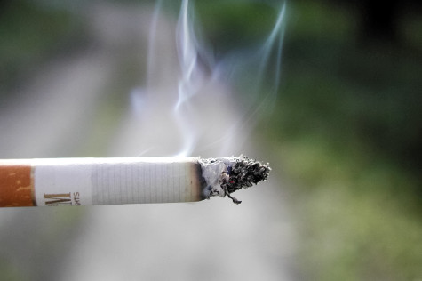 FAU Going Tobacco Free In 2015