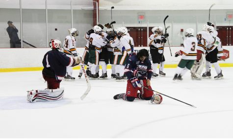 Ice hockey: Owls fell late against Miami