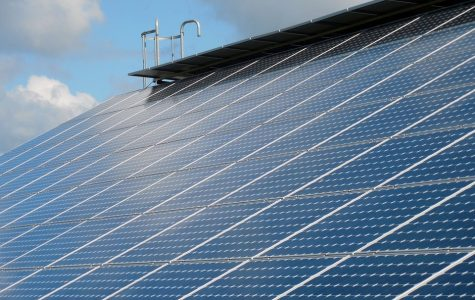 Column: Amendment 1 misleads Florida voters into limiting solar power growth