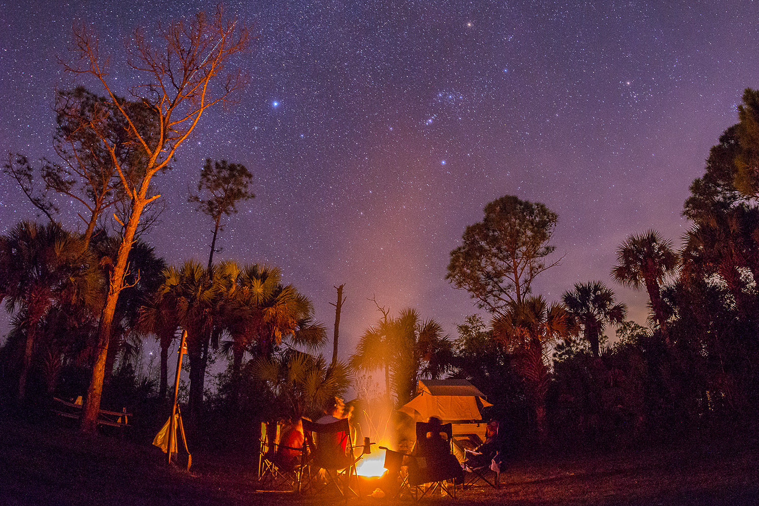 Big Cypress National Preserve. Photo by Emily Creighton
