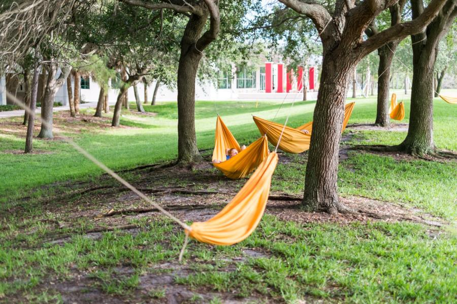 [Mohammed F. Emran | Web Editor] After a long week of finals, students rest in hammocks outside by the pond.  The hammocks were put up by art students for their final art project.