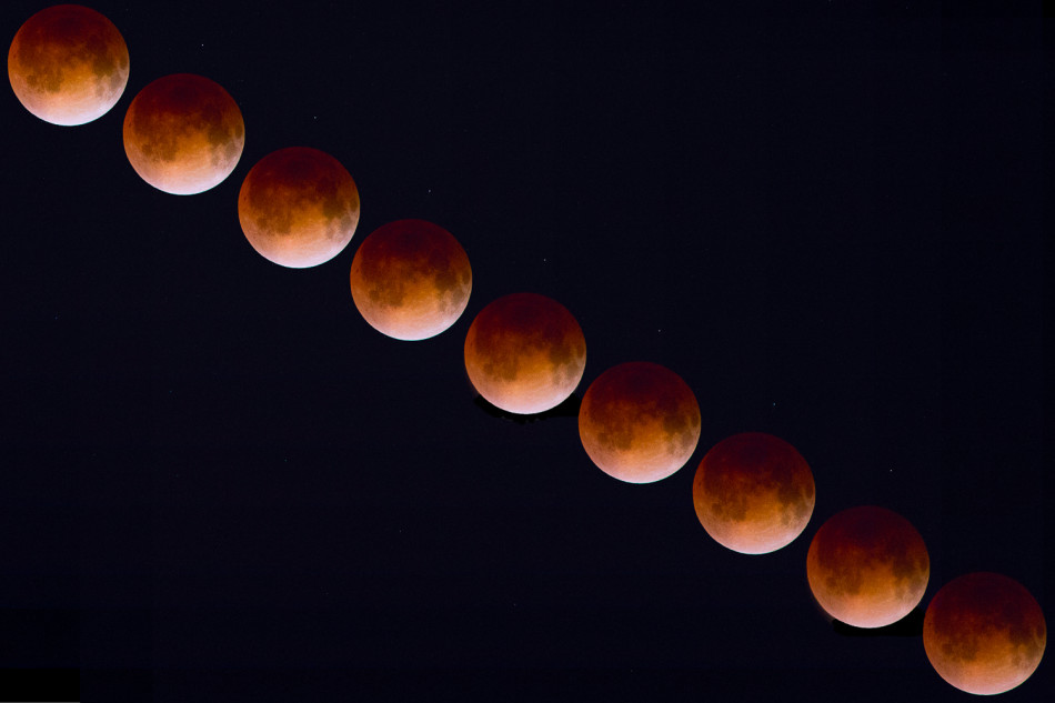 [Kiki Baxter | Web Photo Editor] A composite of Monday night's Blood Moon.