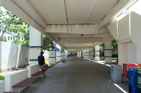 Photo of the current Breezeway  Photo: Perkins and Will Architect