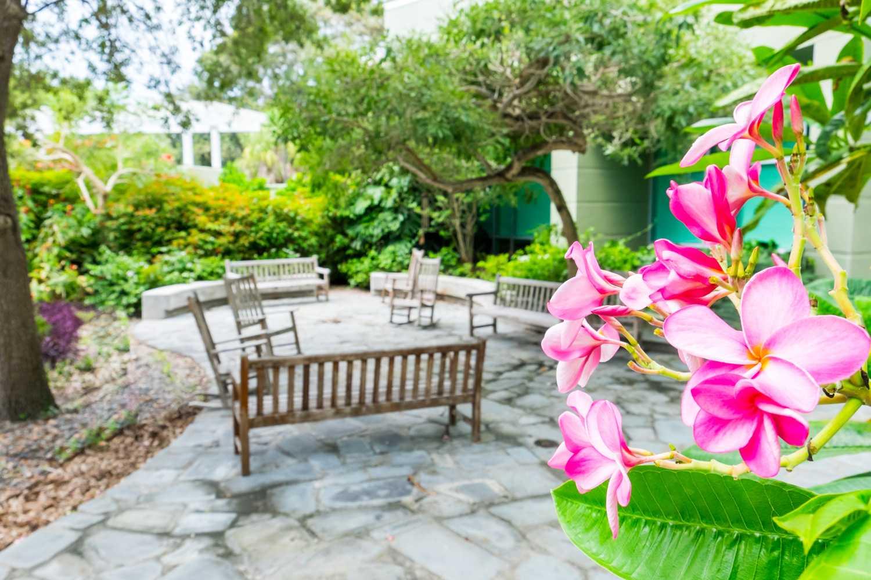Anne Boykin Healing Garden. [Mohammed F Emran | Web Editor ]
