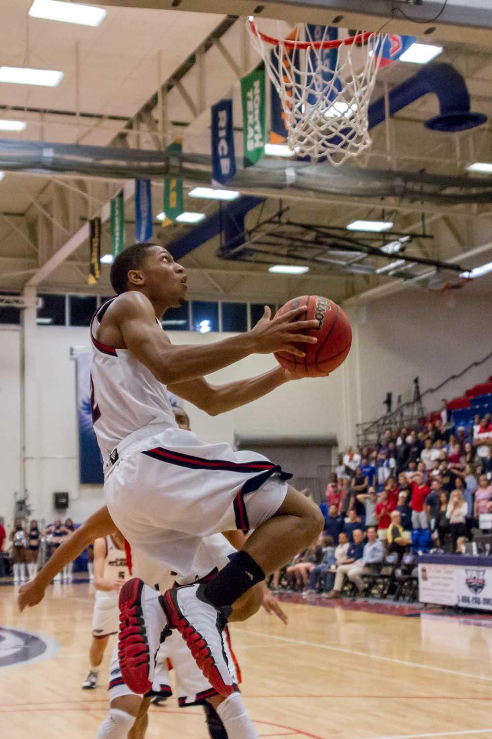 Marquan Botley attempts a reverse layup. The sophomore guard scored 11 points in FAU's 63-56 loss to UTEP on Feb 5.