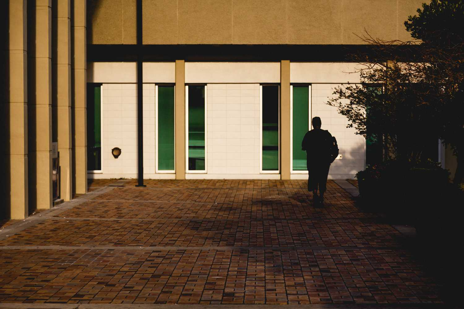 Silhouette of a student on campus.