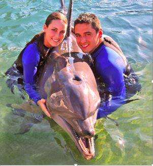 The Dolphin Encounter is a two-hour adventure in shallow water. Photo Courtesy of the Miami Seaquarium Facebook page.