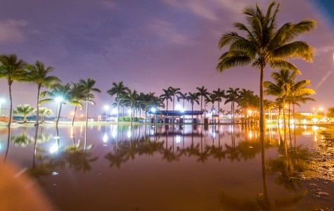 The downpour on Thursday evening led to flooding on FAU's Boca Raton campus until Friday morning. Pictured is a full retention pond behind the softball field around midnight.  Max Jackson | Staff Photographer