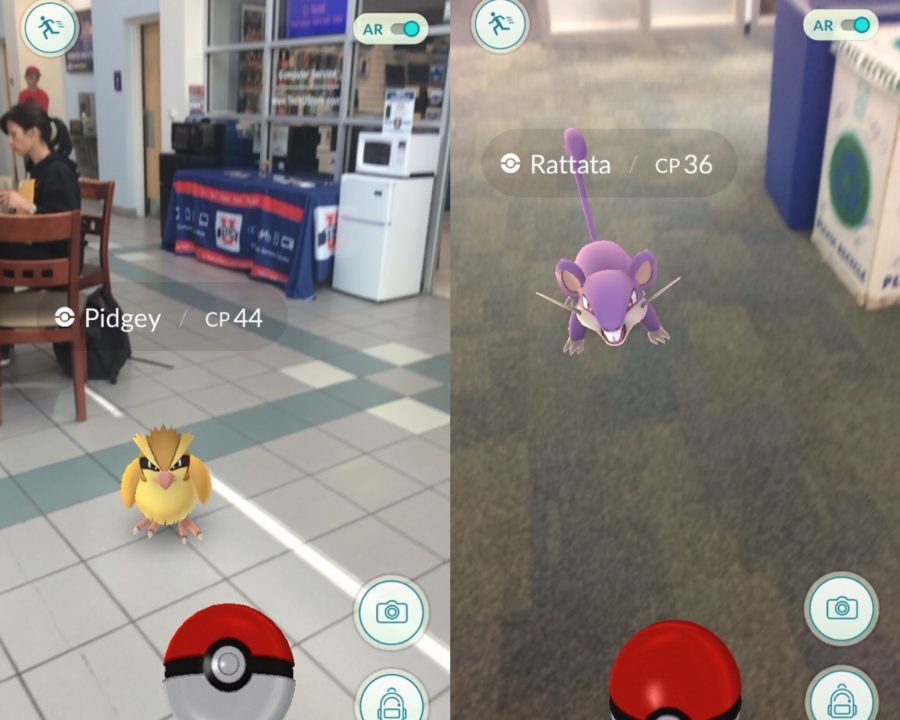 With Pokemon GO, users are able to catch Pokemon characters in real-life, including at FAU.