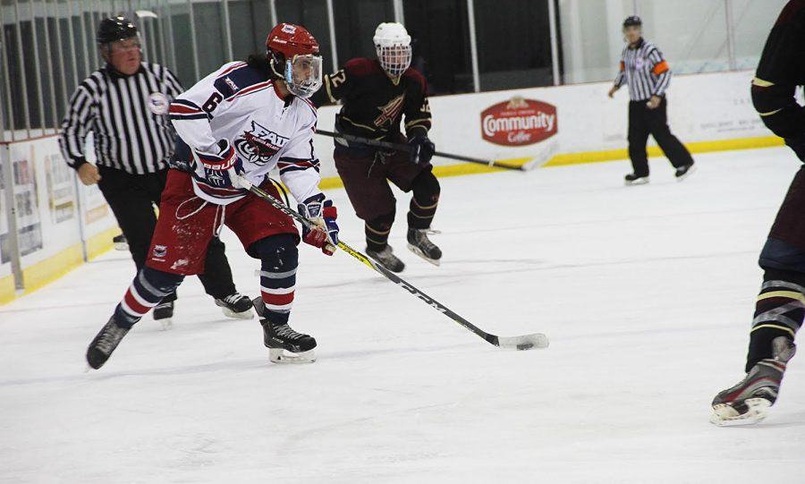 Ice hockey  FSU defeats FAU in two straight games – University Press aab7b3007ec