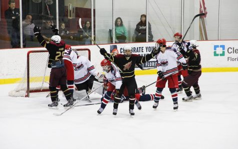 Florida State celebrates after scoring on FAU during Friday's 6-3 defeat. Hilary Webber | Staff Photographer