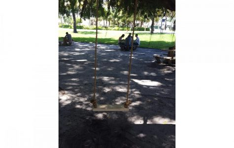 Rope swings outside admin building removed due to safety issues