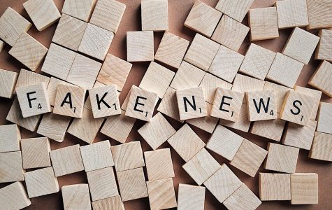 Preview: Game show, second panel to discuss 'fake news'
