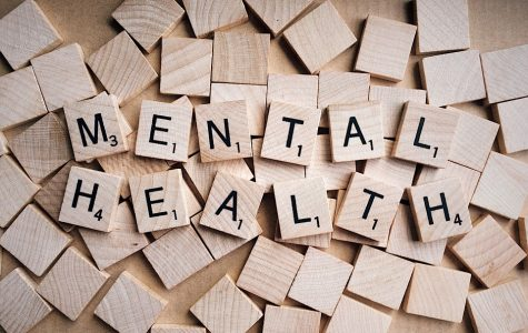Opinion: Boca House of Representatives' 'Mental Health Awareness Day' was a missed opportunity