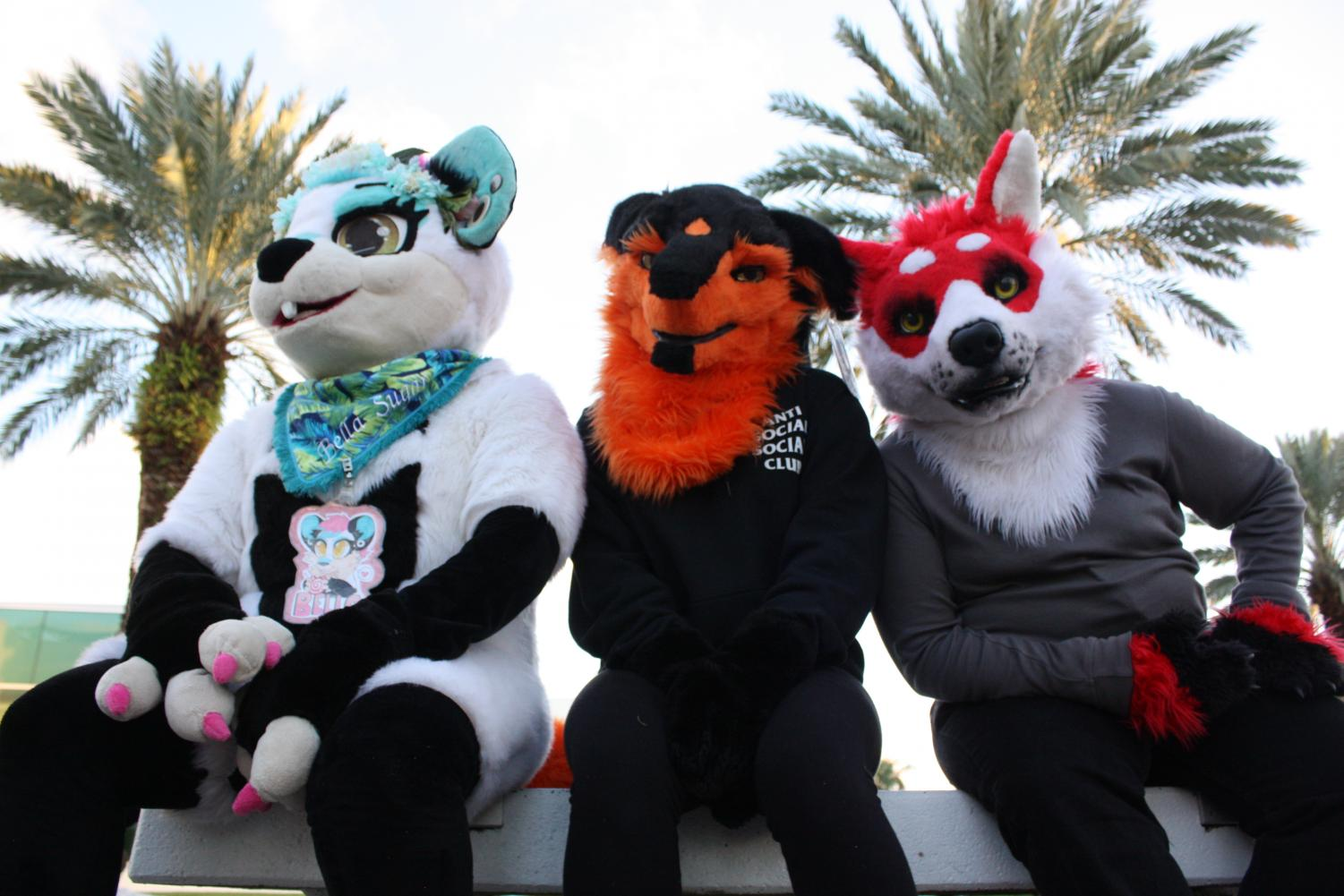 Three members of the Southeast Florida Furries, which recently peaked at 500 members online. Left to right: Amelia Gonzalez (fursona: Bella Sugar), Genna Webber (fursona: Zarø), Mario Rodriguez (fursona: Bark Dango. Photo by Kristen Grau