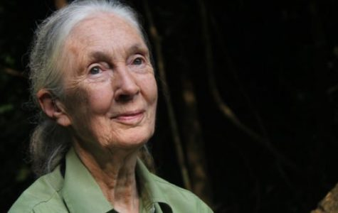 Jane Goodall talks life experiences, environmental conservation at FAU