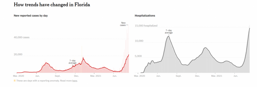 Graph+courtesy+of+the+New+York+Times.