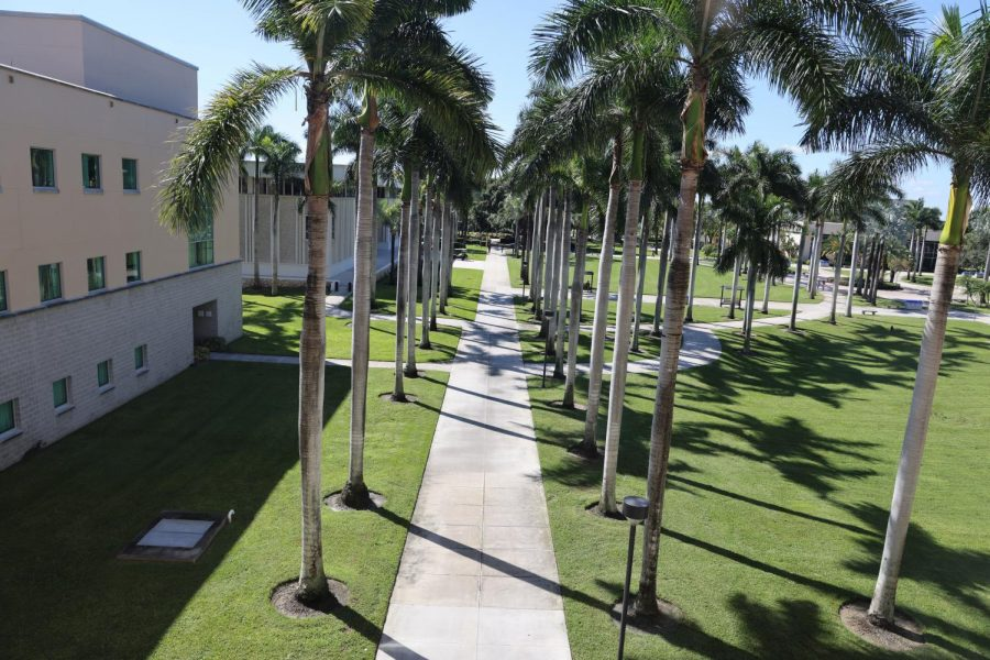 FAU+to+honor+2020+graduates+in+October+ceremony